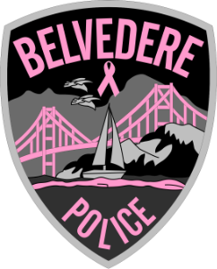 BelvederePINK_PATCH_300